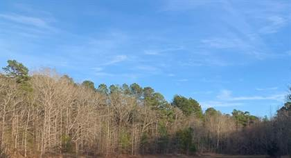 Lots And Land for sale in cr 53, Coila, MS, 38923