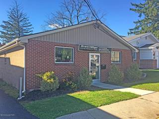Comm/Ind for sale in 120 S Walnut St, Bath, PA, 18014