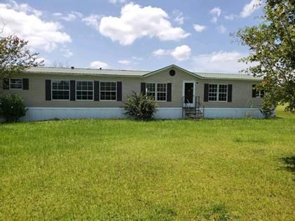 Residential Property for sale in 42 Birchwood Lane, Ray City, GA, 31645