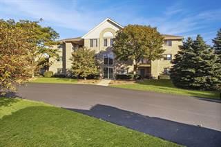 Condo for sale in 6820 Ridge Point Drive 3B, Oak Forest, IL, 60452