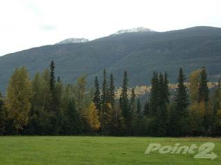 Farm And Agriculture for sale in Robson Valley area, McBride, British Columbia