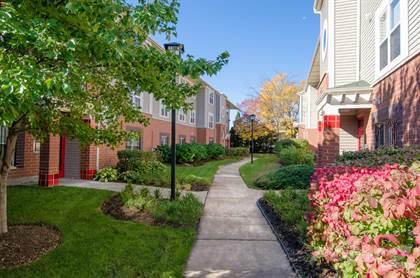 Apartment for rent in 336 W. Cermak, Suite 1D, Chicago, IL, 60616