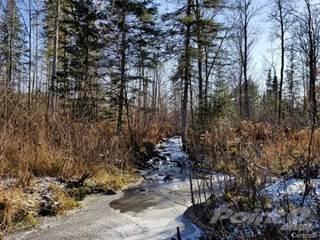 Land for sale in Ch. du Rang-A, Otter Lake, J0X 2P0, Litchfield, Quebec