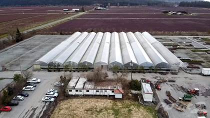 Farm And Agriculture for sale in 80 ACRES NURSERY, Pitt Meadows, British Columbia