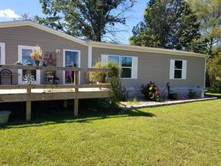 Single Family for sale in 22458 Carlyle Road, Thompsonville, IL, 62890