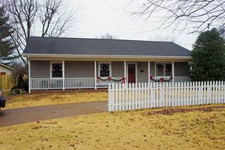 Single Family for sale in 39 Chick Street, Metropolis, IL, 62960