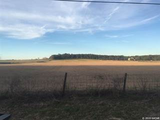 Farm And Agriculture for sale in 15728 NW 78 Avenue, Alachua, FL, 32615