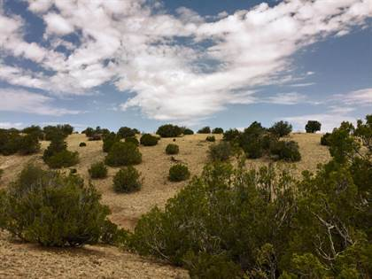 Lots And Land for sale in 81 Pinon Springs Ranch, Magdalena, NM, 87825