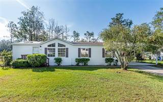 Residential Property for sale in 9911 RAMSHORN STREET, Tampa, FL, 33592