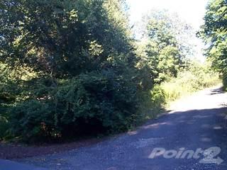 Land for sale in 0 HOTCHKISS AVENUE (REAR), THOMASTON, Thomaston, CT, 06787