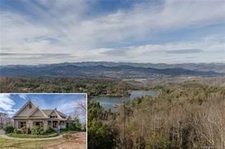 Single Family for sale in 177 Walnut Ridge Circle, Dunns Rock, NC, 28712