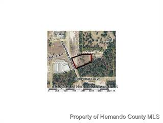 Comm/Ind for sale in 0 Anderson Snow Road, Spring Hill, FL, 34609