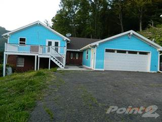 Residential Property for sale in 79 Simpkins Drive, Red Jacket, WV, 25678