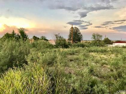 Lots And Land for sale in 704 N Spring, Marfa, TX, 79843
