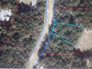 Land for sale in 0 NW 81st Terrace, Fanning Springs, FL, 32693