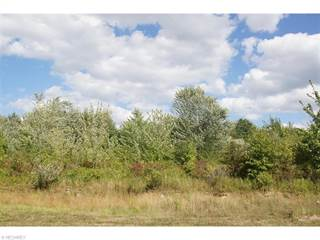 Land for sale in 0 Richmond Ave Northeast, Canton, OH, 44705
