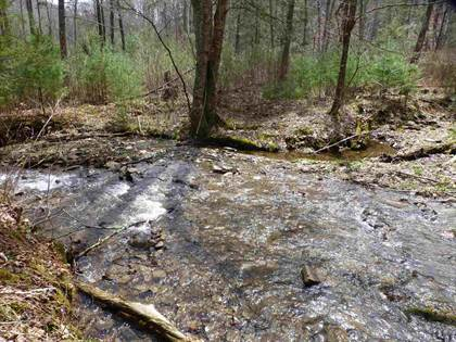 Farm And Agriculture for sale in 61 Ac UPPER BACK CREEK RD, Monterey, VA, 24465