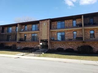 Condo for sale in 11333 Moraine Drive E, Palos Hills, IL, 60465