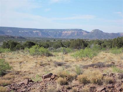 Farm And Agriculture for sale in Tract 59 Bull Canyon Ranches Bull Canyon Ranches Tract 59, Santa Rosa, NM, 88435