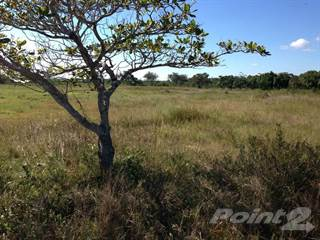 Land for sale in Burrell Boom Castleton Estates, Burrel Boom, Belize