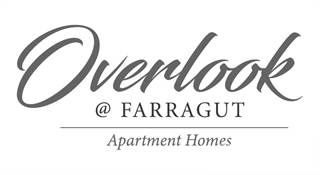 Apartment for rent in Overlook @ Farragut - LeConte Lodge, Knoxville, TN, 37932