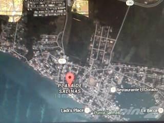 Land for sale in La Playita, Salinas, PR, 00751
