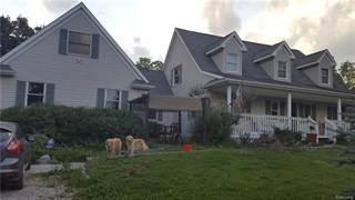 Single Family for sale in 22851 NAPIER Road, Lyon Township, MI, 48167