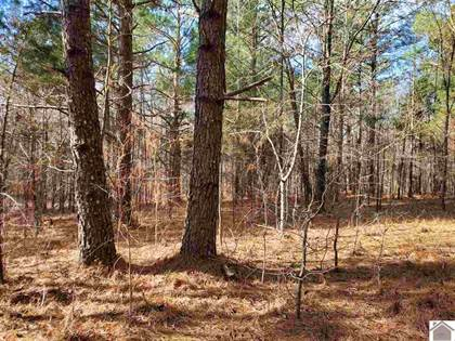 Lots And Land for sale in 0 Ahab Road Lot 11, Block 14, Hardin, KY, 42048