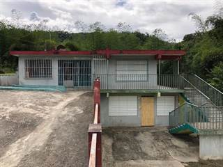 Single Family for sale in 0 RD 409 KM 6.2 INT LOT 1 BARRIO BUCARABONES, Maricao, PR, 00670