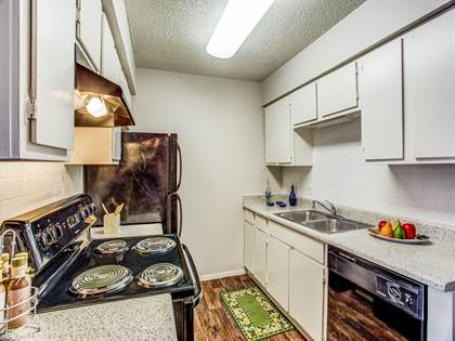 Apartment for rent in Ladera Palms, Fort Worth, TX, 76119