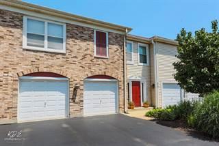 Condo for sale in 473 Village Green Road 101, Naperville, IL, 60540