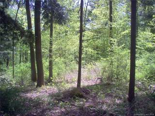 Land for sale in 38 Falls Mountain Road, Salisbury, CT, 06031