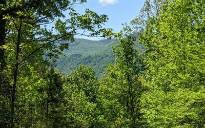 Lots And Land for sale in LOT 3 ECHOTA TRAIL Lot 3, Hayesville, NC, 28904