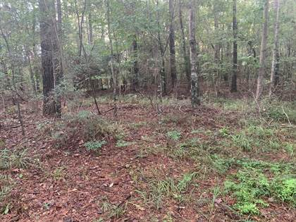 Lots And Land for sale in 000 Old St John Rd, Wesson, MS, 39191