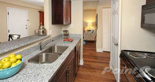 Apartment for rent in Promenade At Belleair Apartments, Clearwater, FL, 33764