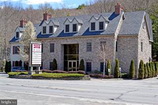 Comm/Ind for rent in 529 SEVEN BRIDGE ROAD SUITE 123, Shawnee on Delaware, PA, 18356
