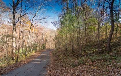 Lots And Land for sale in LT 5 WHITE OAK FOREST Lot 5, Hiawassee, GA, 30546