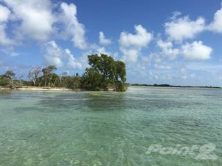 Condo for sale in Rosewood Caye, 1 mile from Ambergris Caye, Ambergris Caye, Belize