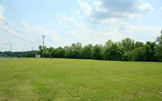 Comm/Ind For Sale In 0 James Campbell Blvd, Columbia Gardens, TN,