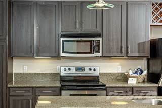 Apartment for rent in The Landmark - 4A - LOFTS, New Braunfels, TX, 78130