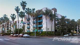Apartment for rent in Academy Village - 1x1, Los Angeles, CA, 91601