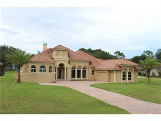 Single Family for sale in 3404 BEAUTIFUL COURT, Lutz, FL, 33559