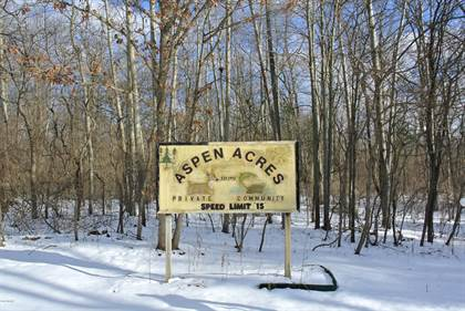 Lots And Land for sale in 44TH STREET, Pullman, MI, 49450