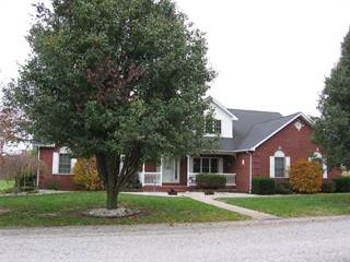 Single Family for sale in 1004 Cherry Street, Bartelso, IL, 62218