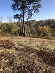 Land for sale in 547 Colson Drive, Bronston, KY, 42518