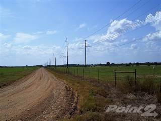 Farm And Agriculture for sale in LR 239, Ashdown, AR, 71853