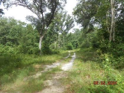Lots And Land for sale in 00 Bold Springs Road, Ochlocknee, GA, 31773