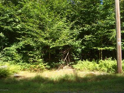 Lots And Land for sale in 1232 Larkspur Lane, Tobyhanna, PA, 18466