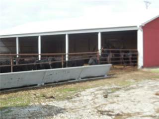 Farm And Agriculture for sale in W 247th St., Louisburg, KS, 66013