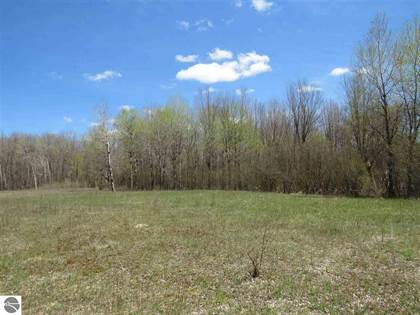Lots And Land for sale in Lindy Road, Thompsonville, MI, 49683